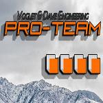 Pro-Team Consulting